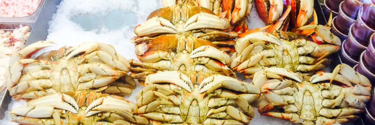 Ecola-Seafood-Cannon-Beach-Restaurant-65